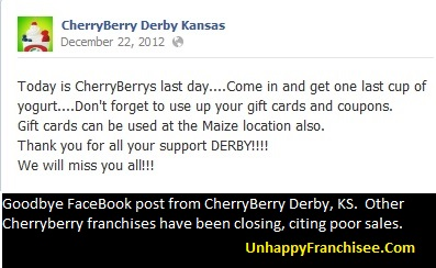 CherryBerry franchise