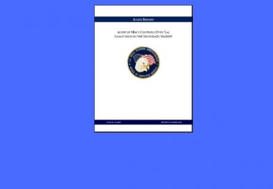 SBA Loan Audit