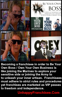 Be Your Own Boss Franchise Myth